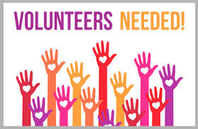 MCNV is looking for an international Occupational Therapy Volunteer